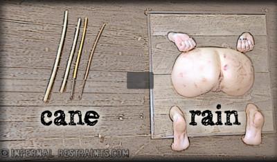 Cane Rain - Rain Degrey