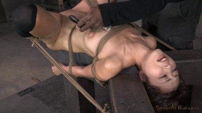 Petite Asian fucktoy Marica Hase used hard in tight bondage