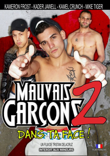 Description Mauvais Garcons 2 - Bad Boy Street 2 (2014)