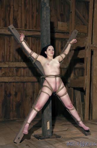 Insex - 92 at the Farm, Part Two (92)