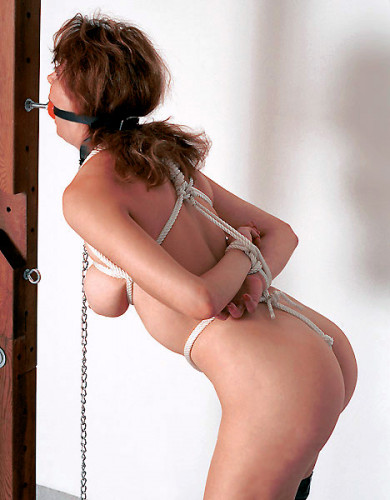 Tie Her Up Or Work