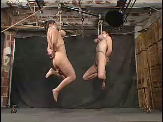 Insex - Twins (912, Piglet)