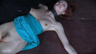 Violet Monroe Pull (2016)
