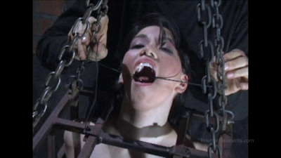 Felonie – Caged
