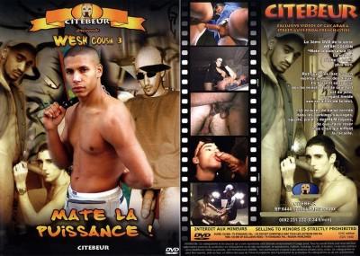 Wesh Cousin 3: Matte la puissance! DVDRip