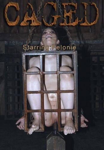 Sexy Felonie Caged Hard