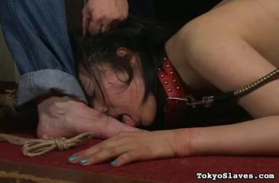 TokyoSlaves — Mahmi's Torment