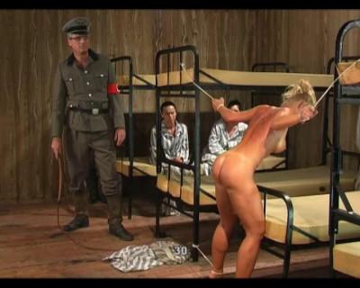 Dr. Mengele