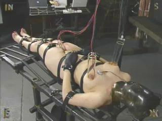 Deprived Live Feed Spacegirl, 331, Donna – InSex