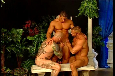 [Pacific Sun Entertainment] Four Males Having Great Gay Sex In Open