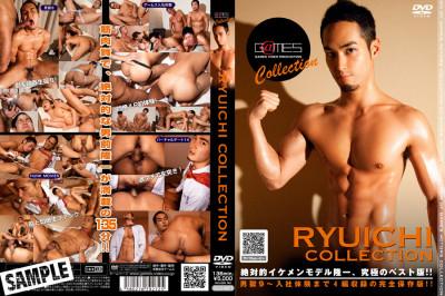 Ryuichi Collection