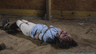 The Vigilante Turns His Attention Towards Rachel – Hung In The Barn – Part 3