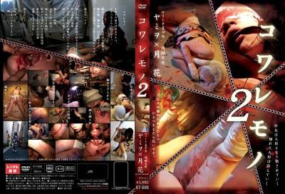 Hard Japan Torture 21 DVDRip