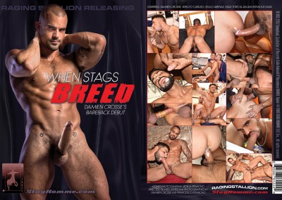 Stag Homme Studios – When Stags Breed FHD (2016)
