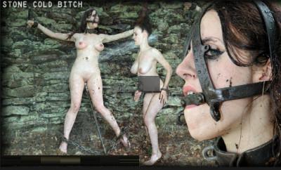 Stone Cold Bitch — Iona Grace