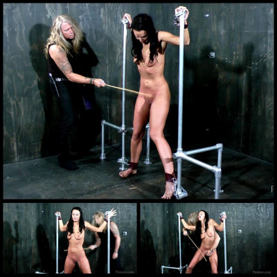 Need For Pain (16 Sep 2015) PainToy