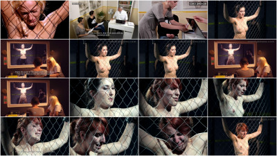Mood-Pictures – The Milgram Experiment 4 HD 2015