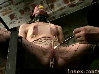 Exclusive collection Insex - 40 clips. 2.
