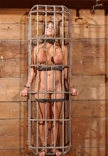 Caged Pig in action