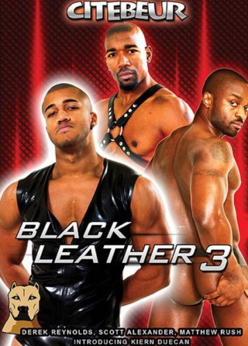 Black Leather 3 ( Part 1)