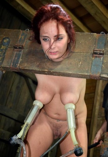 Milking machine in action