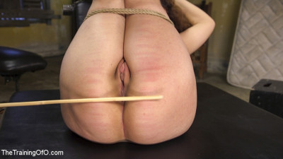 Training Callie Klein To Be An Obedient, Willing, Dirty Slut