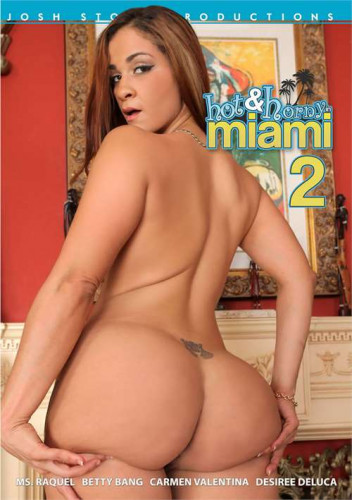 Josh Stone Productions Hot & Horny In Miami vol.2