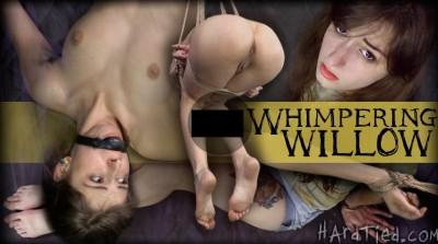 HdT - Jul 02, 2014 - Willow Hayes, OT high