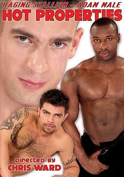 Hot Properties - action, style, america, stud, new