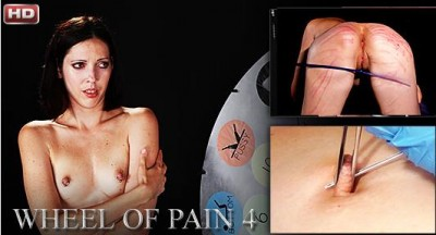 ElitePain   Wheel of Pain 4