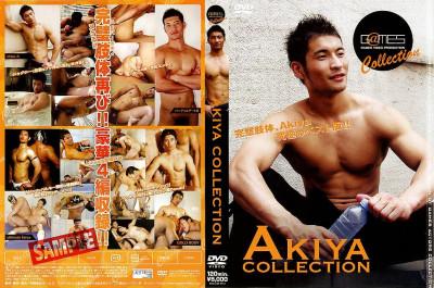Akiya Collection
