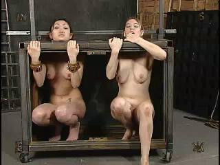 Insex – 731 (Live Feed From January 7, 2003)
