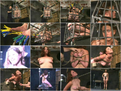 Insex - Application (Live Feeds From June 29 and July 6, 2001)