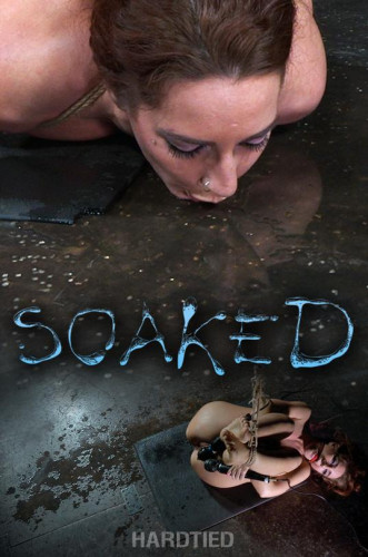Savannah Fox Soaked