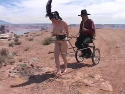 Southwest Ponygirls (2014)