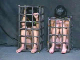Insex – The Trial (Live Feed From October 7, 2001) RAW