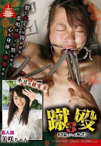 Japan Extreme - 3 Strikes Kick Keru Nagu 3 DVD