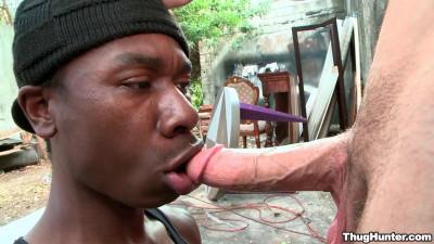 Lick my dick!
