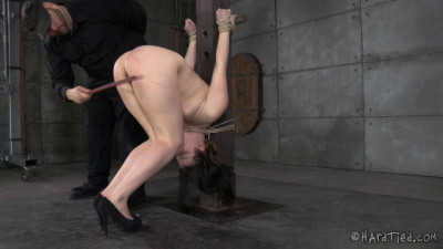 Harley Ace Tied Up (2014)