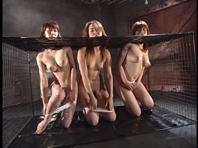 Art Video adv-sr0006