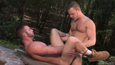 Falcon - Naughty Pines 1