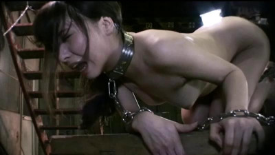 Ling Dog Slave Saga 2