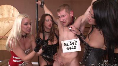 Stevie Shae Brianna Slave 3 mistresses milk slave (2014)