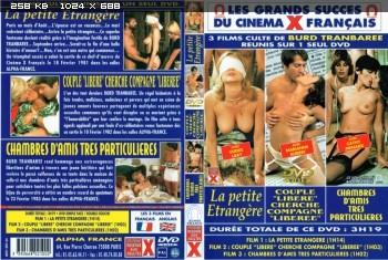 La petite Etrangere (1980) DVDRip AVC