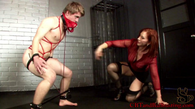 Bound Teased Punished and Rewarded