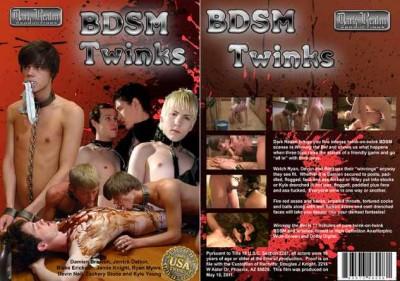 BDSM Twinks