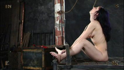 Insex – 16×9