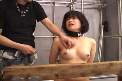 Japanese tit nailing