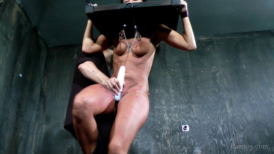 Orgasms Paddles And Clamps
