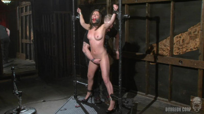 BDSM - The Whip Chamber - Casey Calvert (2011)